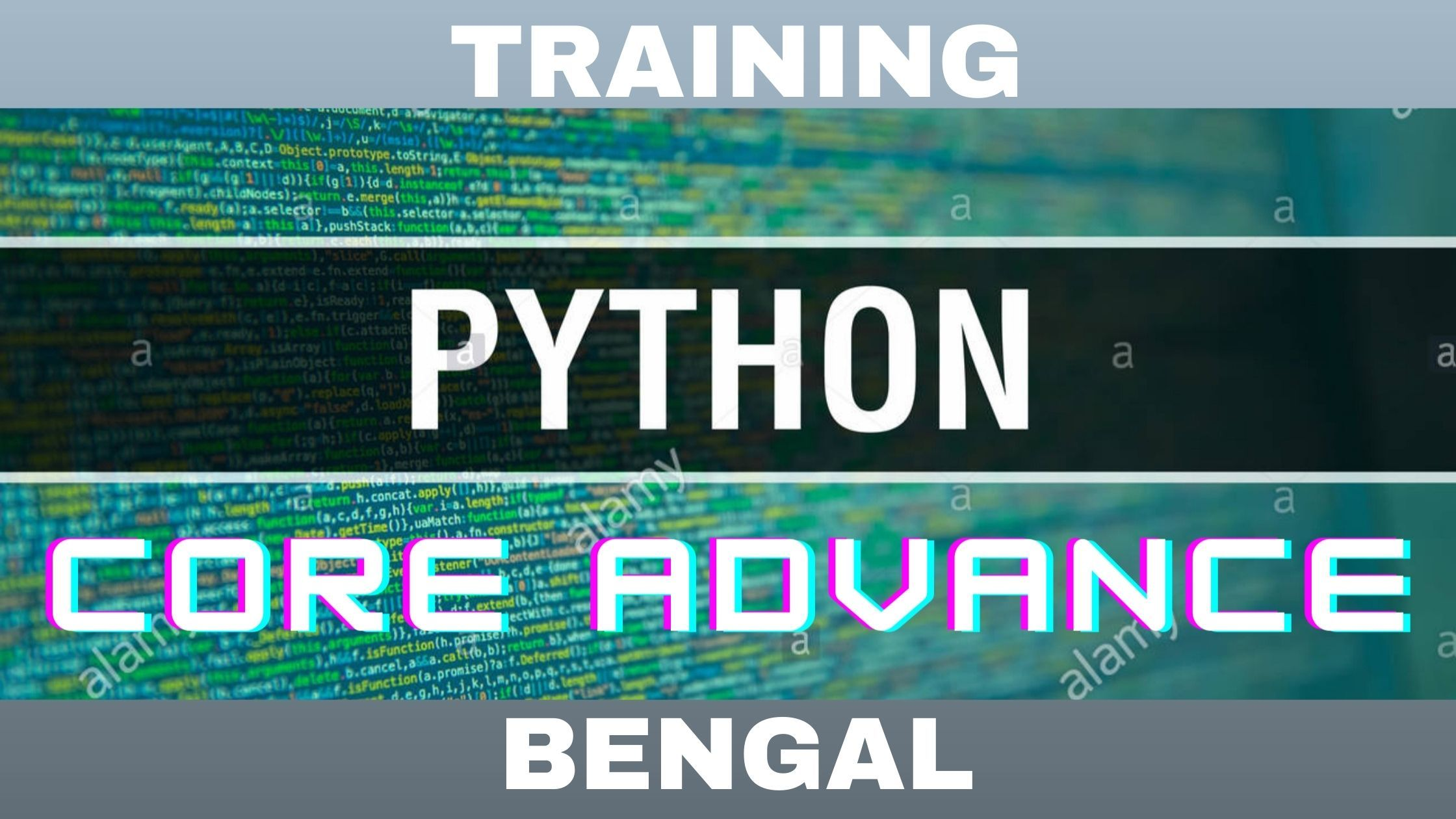 python_in_bengal-background.jpeg